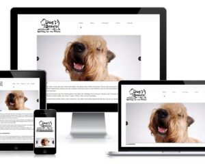 Webdesign: DOG'S BEAUTY, München