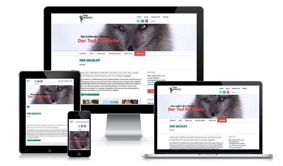 Neue Website für NGO aus München